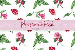 Pomegranate Fresh. Patterns Set Product Image 4