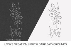 Leaves - Vintage Line Drawing Mountain Ash Product Image 2