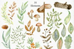 Woodland. Watercolor set. Product Image 3