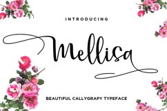 Mellisa Calligraphy Font Product Image 1