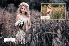 14 Moody Photoshop Actions, ACR and LUT Presets Product Image 2