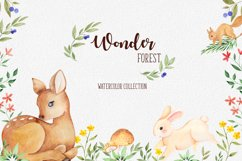 Wonder forest. Watercolor collection Product Image 1