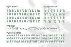 Bushman font set Product Image 6