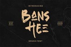 Web Font Banshee - Brush Font Product Image 1
