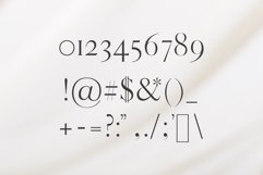 Warick Serif Font Family Product Image 6