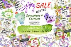 Spring Sale succulents & cactuses watercolor bundle 75% OFF! Product Image 1