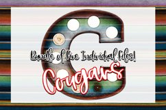 Cougars Marquee Bundle Product Image 1