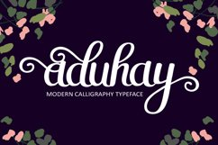 Aduhay Script Product Image 1