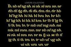Hamachi Font Product Image 4