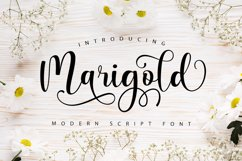 Marigold Script Product Image 1