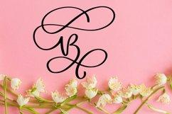 Web Font Swirly Letters - Monogram Font Product Image 2