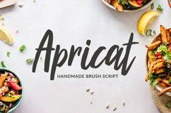 Apricat Brush Script Product Image 1
