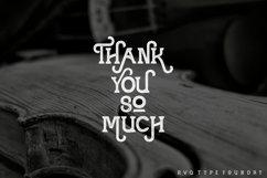 Violina typeface Product Image 4