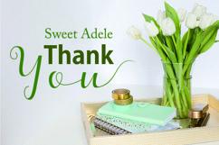 Web Font Adele Script Product Image 6