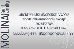 Molina Serif Font Product Image 4