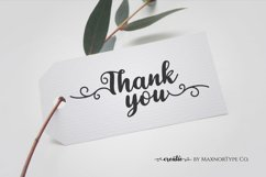 Creatie - A Lovely Modern Script Font Product Image 16