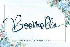Boomolla Product Image 1
