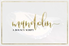 Handwritten Font Bundle - 12 Fonts Product Image 2