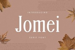 Web Font Jomei Font Product Image 1