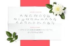 Rei Biensa - Casual Signature Script Typeface Product Image 3