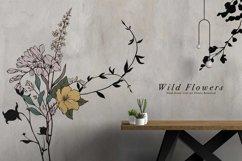 WILD FLOWERS Illustration Botanical Product Image 4