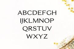 Erynn Serif Font Product Image 2