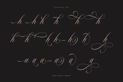 Rhapsody | Calligraphy Script Product Image 2