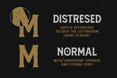 Amnestia Typeface with Extra Product Image 5