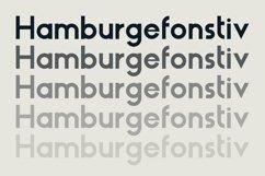 HAUS Sans Bold Product Image 2