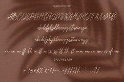 Collathives Signature Brush Font Product Image 4