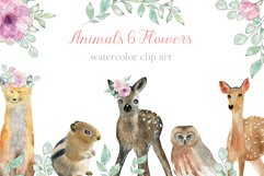 Animals and Flowers Product Image 1