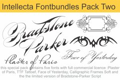 Intellecta Fontbundles Pack Two Product Image 1