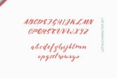 Multilingual Brush Font- Naquia Font Webfont Product Image 2