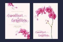 Venoisse - Modern Calligraphy Product Image 3