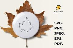 Leaves - Fall bundle - Fall leaves - Leaves bundle Product Image 5