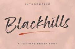 Blackhills - Brush Fonts Product Image 1