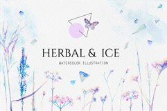 Watercolor floral design collection, herbal and ice Product Image 1
