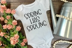 Web Font Springtime Wishes - A Cute Handlettered Font Product Image 4
