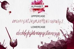 Imagination Script Font Product Image 6