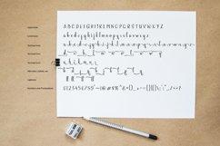 Fellant - Script Font Product Image 5