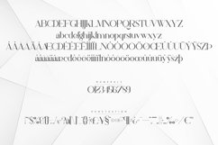 Silver Queen - Serif Typeface Product Image 6