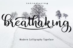Breathaking script Font Product Image 6