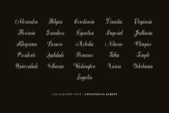 Constância Script Family Product Image 5