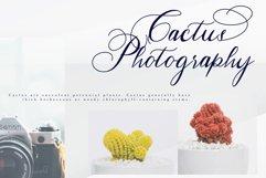 Hertina Product Image 6