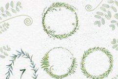 Watercolor herbs. Clipart collection Product Image 6