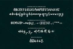 Web Font Alyra - A Handwritten Script Font Product Image 5