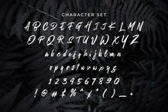Web Font Being Sensible Product Image 4