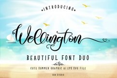 Wellington Font Duo Extras Product Image 1