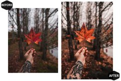 10 Rich And Moody Photoshop Actions And ACR Presets, fall Ps Product Image 4