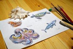 Watercolor sea animals & bonus! Product Image 5